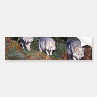 Pegatina para el parachoques de los lobos pegatina para auto