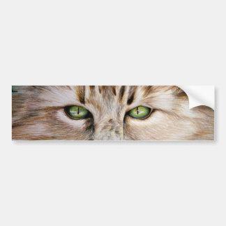 Pegatina para el parachoques de los ojos de gato etiqueta de parachoque