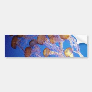Pegatina para el parachoques de los pescados de ja pegatina de parachoque