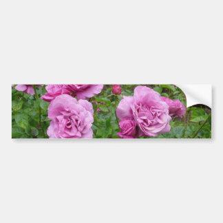 Pegatina para el parachoques de los rosas pegatina para auto