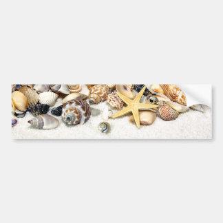 Pegatina para el parachoques de los Seashells Pegatina De Parachoque