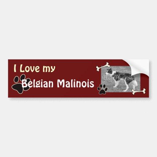Pegatina para el parachoques de Malinois del belga Pegatina De Parachoque