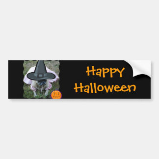 Pegatina para el parachoques de princesa Witch Hal Etiqueta De Parachoque