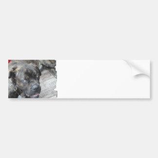 Pegatina para el parachoques de reclinación de Cor Pegatina Para Auto