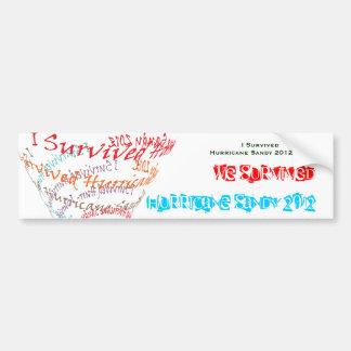 Pegatina para el parachoques de Sandy Etiqueta De Parachoque