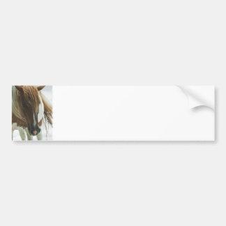 Pegatina para el parachoques del caballo salvaje d etiqueta de parachoque