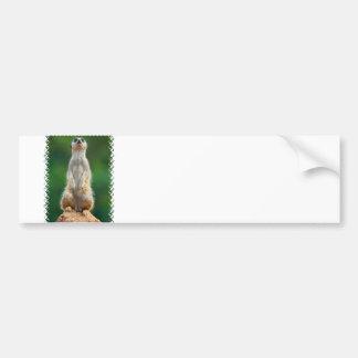 Pegatina para el parachoques del centinela de Meer Etiqueta De Parachoque