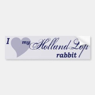 Pegatina para el parachoques del conejo de Holanda