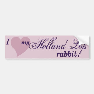 Pegatina para el parachoques del conejo de Holanda Pegatina Para Coche