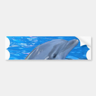 Pegatina para el parachoques del delfín de Bottlen Pegatina Para Auto
