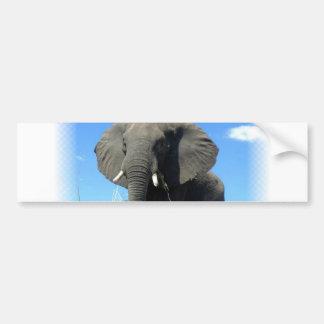 Pegatina para el parachoques del elefante africano pegatina de parachoque