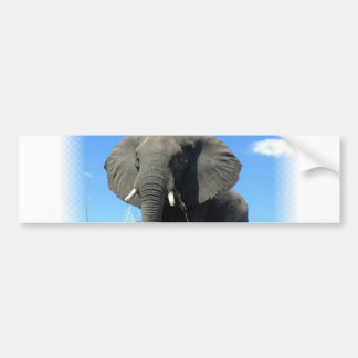 Pegatina para el parachoques del elefante africano pegatina para auto