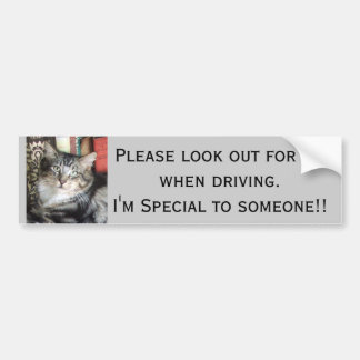 Pegatina para el parachoques del gatito de Purdy Etiqueta De Parachoque