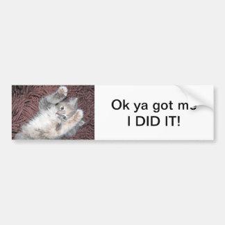 Pegatina para el parachoques del gatito pegatina para auto