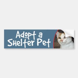 Pegatina para el parachoques del gato de Shorthair Etiqueta De Parachoque