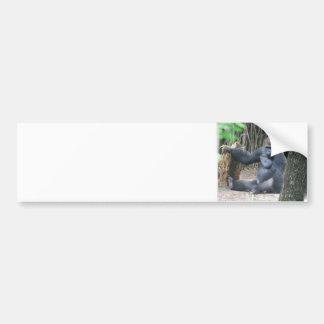 Pegatina para el parachoques del gorila del Silver Pegatina De Parachoque