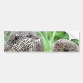 Pegatina para el parachoques del hábitat de la nut etiqueta de parachoque