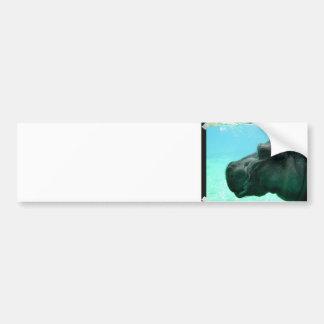 Pegatina para el parachoques del hipopótamo de la  etiqueta de parachoque