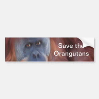 Pegatina para el parachoques del orangután pegatina para auto