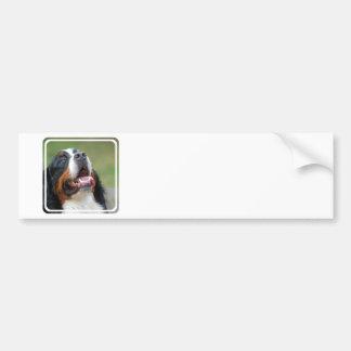Pegatina para el parachoques del perro de Berner S Pegatina De Parachoque