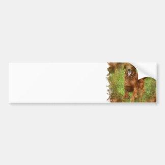Pegatina para el parachoques del perro de Irish Se Pegatina Para Auto