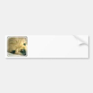 Pegatina para el parachoques del perro de Pekinges Etiqueta De Parachoque