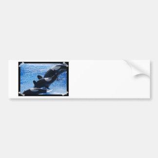 Pegatina para el parachoques del trío de la orca etiqueta de parachoque