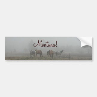 Pegatina para el parachoques escarchada de la nieb etiqueta de parachoque