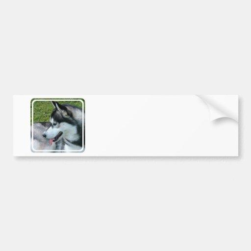 Pegatina para el parachoques fornida del perfil pegatina para auto