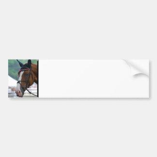 Pegatina para el parachoques grande del caballo de etiqueta de parachoque