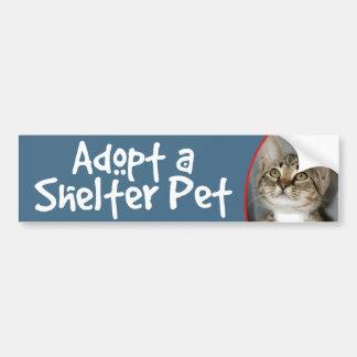 Pegatina para el parachoques gris gris del gatit etiqueta de parachoque