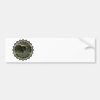 Pegatina para el parachoques hedionda de la mofeta pegatina de parachoque