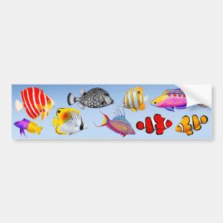 Pegatina para el parachoques inmediata del acuario pegatina de parachoque