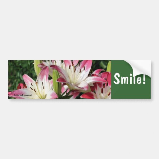 Pegatina para el parachoques inspirada de la flor  pegatina para auto