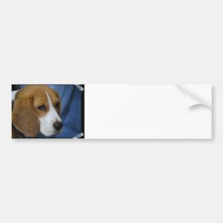 Pegatina para el parachoques linda del beagle pegatina para auto