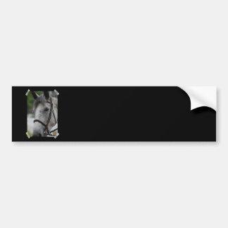 Pegatina para el parachoques linda del caballo del etiqueta de parachoque