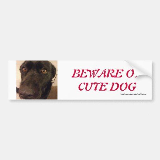Pegatina para el parachoques linda del perro pegatina para auto