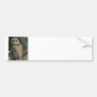 Pegatina para el parachoques manchada del búho etiqueta de parachoque