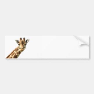 Pegatina para el parachoques Necked larga de la ji Etiqueta De Parachoque