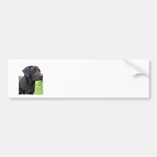 Pegatina para el parachoques negra del labrador re pegatina para auto