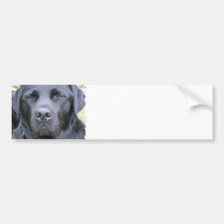 Pegatina para el parachoques negra del perro del l pegatina para auto