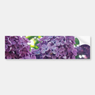 Pegatina para el parachoques púrpura de las lilas pegatina para auto