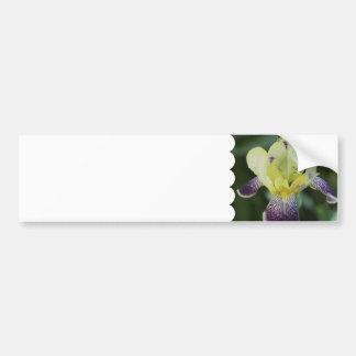 Pegatina para el parachoques rara de la orquídea etiqueta de parachoque