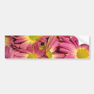Pegatina para el parachoques rosada de las momias etiqueta de parachoque