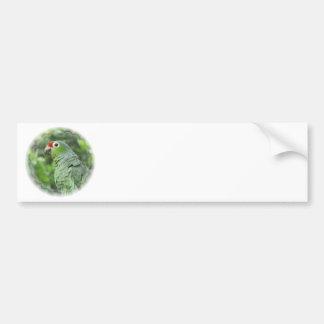 Pegatina para el parachoques verde del loro pegatina para auto