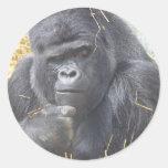 Pegatina pensativo del gorila
