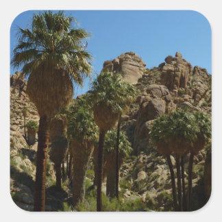 Pegatina perdido del oasis de las palmas