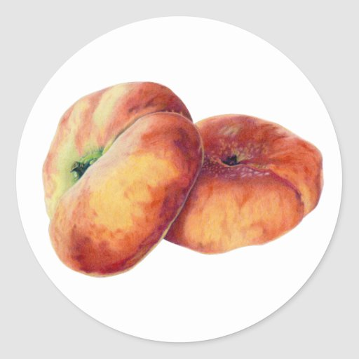 Pegatina plano de las nectarinas