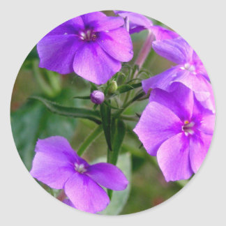 Pegatina púrpura bonito de los Wildflowers