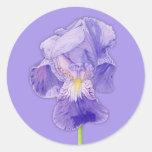 Pegatina púrpura de la púrpura del iris